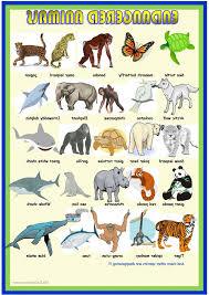 Endangered Animals Worksheets Ks1   Homeshealth.info
