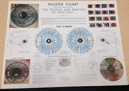 Dr Bernard Jensen Iridology Chart Name