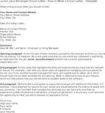Clipper Programmer Cover Letter Goprocessing Club