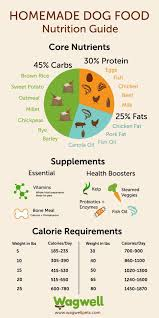 Human Nutritional Needs Chart 10 Best Dog Food Nutrition Infographics Ever Made Make