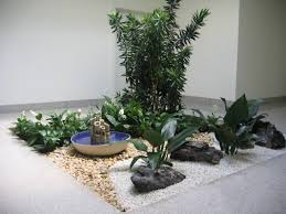 Indoor Rock Garden Indoor Rock Garden Gardening Ideas