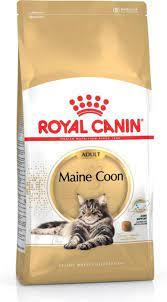 royal canin cat food maine