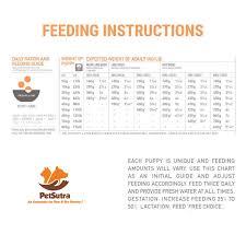 Orijen Puppy Feeding Chart Buy Orijen Large Breed Adult Puppy Dry Food 340 Gm Online