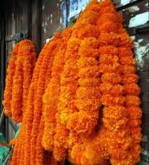 Darshan Nepal Store - Sayapatri Phool Mala @Darshan Nepal Store | Facebook