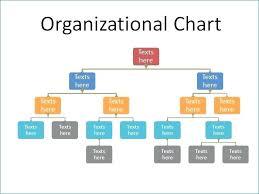 Organization Chart Download Organization Chart Template Free Authentic Organizational Templates