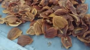 Cách sấy khô trái cây bằng máy sấy thực phẩm đa năng, 0933.676262 - YouTube