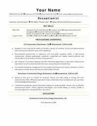 Free Customer Service Resume Templates Enchanting Free Sample Resume For Customer Service Unique 48 Customer Service