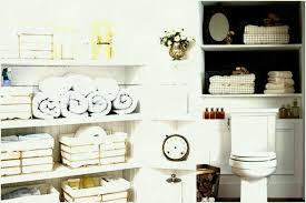 bathroom cabinets san diego. Bathroom Cabinet Storageanizer Popular Of Ideasanizersan Cabinets San Diego