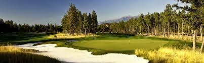 Turf Disease Chart Canada Golf Course Nufarm Canada
