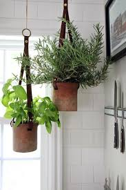 Hanging Herbs in the Kitchen