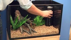 Fish Tank Setting Up A Goldfish Aquarium Youtube