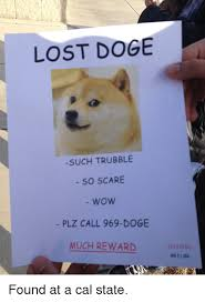 lost doge. Interesting Doge Doge Scare And Wow LOST DOGE SUCH TRUBBLE SO SCARE Wow PLZ Throughout Lost Doge