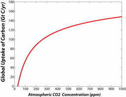 graph showing how the rate of photosynthesis increases as concentration of co2 in atmosphere increases