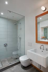 Stand alone shower bathroom contemporary with bathroom mirror glass shower  door