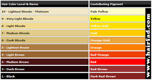 Image Result For Hair Color Levels 1 10 Chart In 2019