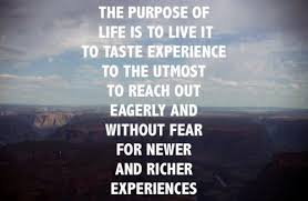Life Experience Quotes Classy 48 Wise Quotes About Life Experiences Pelfusion