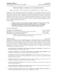 Credit Analyst Resume Free Corporate Banking Credit Analyst Resume Templates At