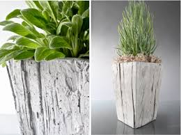 all in one concrete garden in a box