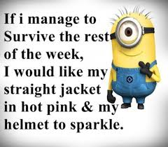 Quotes About Work New 48 Minion Quotes About Work