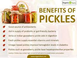naturally fermented salt pickles encourage the growth of these friendly bacteria which will replenish their numbers in our digestive system and re
