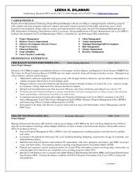 Program Manager Resume Resumes Summary Statement Sample Pdf