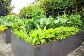 steel raised garden bed steel raised beds urban farm colorbond raised garden beds adelaide