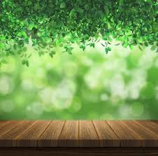 background image nature. Perfect Background Nature Design With Bokeh Effect Free Photo With Background Image