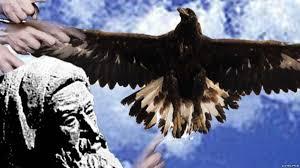 Image result for تصویر برای روزی ز سر سنگ عقابی به هوا خاست