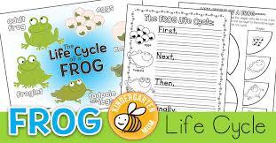 Frog Life Cycle Printables Kindergarten Mom