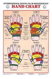 Hand Reflexology Chart International Institute Of
