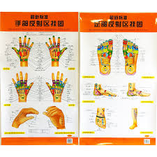Us 12 58 The Newest Standard Reflection Hologram Of The Hand Foot Bilingual Charts Chinese And English For Self Care In Flip Chart From Office