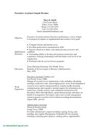 Sample Resume Objective For Entry Level Position Valid Resume ...