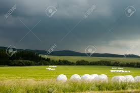 Sunny Meadow With Silage Bags And With Dark Sky In Background Stock
