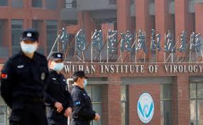 El equipo de la OMS en Wuhan asegura que tiene datos «que nadie ha visto  antes»   El Correo