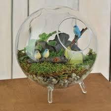 terrarium design terrarium houses glass house terrarium containers footed glass terrarium with blue bird