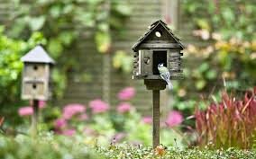 Birdhouse Why You Need A Bird House Or Two In Your Garden And Which Ones