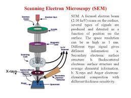 Scanning Electron Microscopy Sem Ppt Download