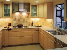 Small Picture kitchen doors Exquisite Contemporary Kitchen Cabinet