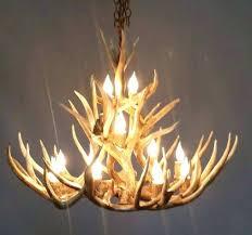 faux antler chandelier best of chandelier beautiful antler chandeliers ideas wallpaper photos for faux antler chandelier faux antler chandelier