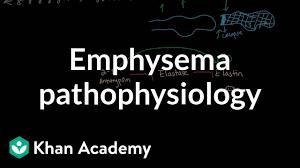 Pathophysiology Of Emphysema Flow Chart Emphysema Pathophysiology Video Khan Academy