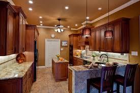 lighting ideas for kitchen ceiling. beautiful kitchen traditional kitchen with custom hood golden moon granite woven rattan 1  light mini pendant throughout lighting ideas for ceiling