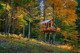 treehouse furniture ideas. Tree House Designs Modern Plans Nature Good Ideas Treehouse Furniture S