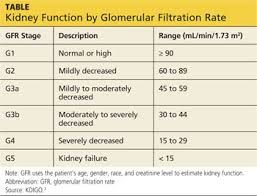 Is Dxa Valid For Kidney Patients Clinician Reviews