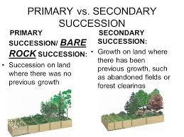 Primary And Secondary Succession Venn Diagram Venn Diagram Of Primary And Secondary Succession Under