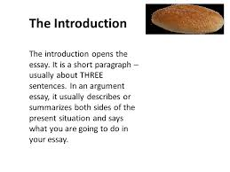 essay writing essays like sandwiches or burgers are divided into  2 the introduction