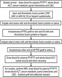 Coagulation Of Blood Flow Chart Experimental Procedure Flow Chart Pt Prothromobin Time