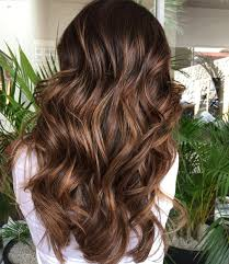 Chocolate Brown Hair Color With Highlights