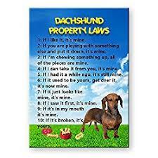 dachshund gifts
