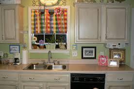 Painting Kitchen Diy Refinish Kitchen Cabinets Diy Stain Kitchen Cabinets Kitchen