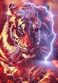 Red Tiger by resresres on DeviantArt ...